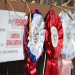 expo-prado-2016-dia-5-57