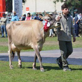Expo Prado 2017 - Día 11 (82)