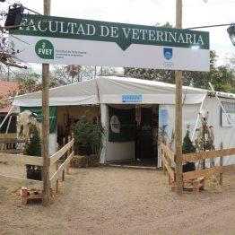 Expo Prado 2017 - Día 1_074