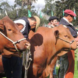 Expo Prado 2017 - Día 1_110