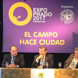 Expo Prado - Día 2 (2)