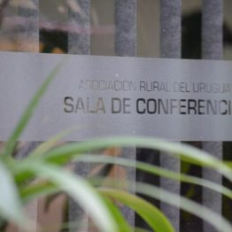Expo Prado - Día 3 (30)
