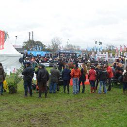 Expo Prado - Día 6 (49)