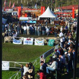 Expo Prado - Día 7 (34)