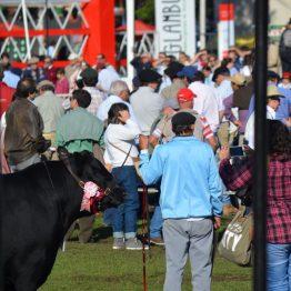 Fotos Expo Prado 2017 - Día 9 (33)