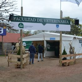 Stands Expo Prado 2017 (31)