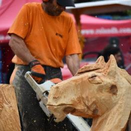 Fotos Expo Prado 2018 - Día 10 (75)