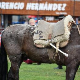 Fotos Expo Prado 2018 - Día 11 (103)