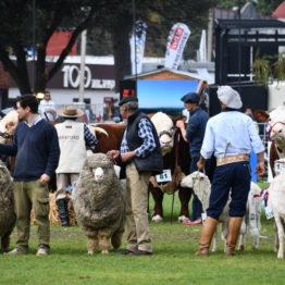 Fotos Expo Prado 2018 - Día 11 (21)