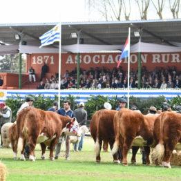 Fotos Expo Prado 2018 - Día 11 (30)