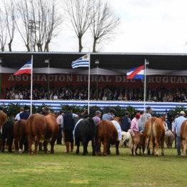 Fotos Expo Prado 2018 - Día 11 (31)