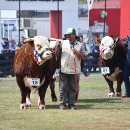 Fotos Expo Prado 2018 - Día 11 (39)