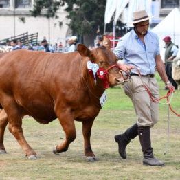 Fotos Expo Prado 2018 - Día 11 (53)