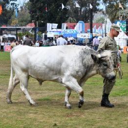 Fotos Expo Prado 2018 - Día 11 (62)
