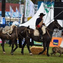 Fotos Expo Prado 2018 - Día 11 (94)