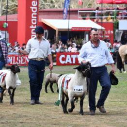 Fotos Expo Prado 2018 - Día 11 (98)