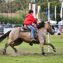 Fotos Expo Prado 2018 - Día 12 (66)