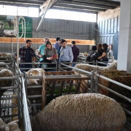 Fotos Expo Prado 2018 - Día 2 (8)