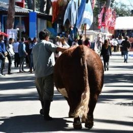Fotos Expo Prado 2018 - Día 3 (145)