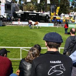 Fotos Expo Prado 2018 - Día 3 (52)
