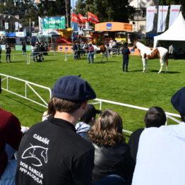 Fotos Expo Prado 2018 - Día 3 (53)