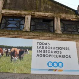 Fotos Expo Prado 2018 - Día 3 (95)