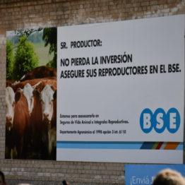 Fotos Expo Prado 2018 - Día 4 (19)