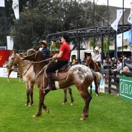 Fotos Expo Prado 2018 - Día 4 (87)