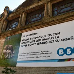 Fotos Expo Prado 2018 - Día 5 (33)