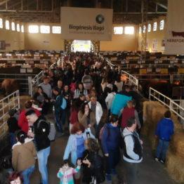 Fotos Expo Prado 2018 - Día 6 (12)