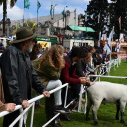 Fotos Expo Prado 2018 - Día 6 (38)