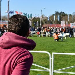 Fotos Expo Prado 2018 - Día 6 (52)