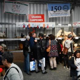 Fotos Expo Prado 2018 - Día 6 (71)