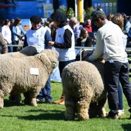 Fotos Expo Prado 2018 - Día 7 (57)