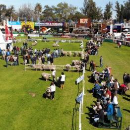 Fotos Expo Prado 2018 - Día 7 (7)