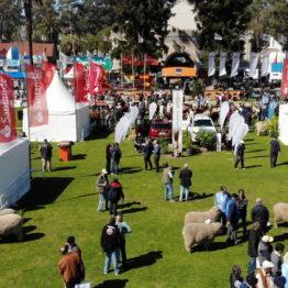 Fotos Expo Prado 2018 - Día 7 (9)