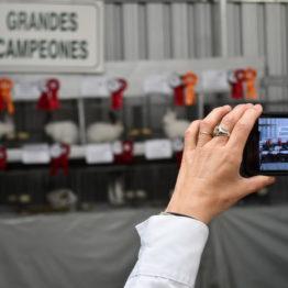 Fotos Expo Prado 2018 - Día 9 (47)