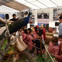 Fotos Expo Prado 2018 - Día 9 (57)