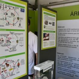 Fotos Expo Prado 2018 - Día 9 (59)