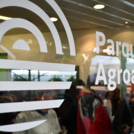 Expo Prado 2019 - Día 1 (106)