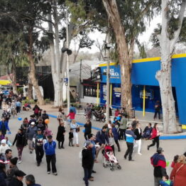 Expo-Prado-2019-Día-10-10