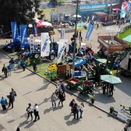 Expo-Prado-2019-Día-10-11
