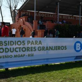 Expo Prado 2019 - Día 10 (138)
