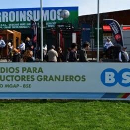 Expo-Prado-2019-Día-10-145