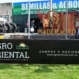 Expo Prado 2019 - Día 10 (150)