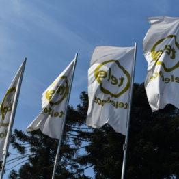 Expo Prado 2019 - Día 10 (172)