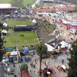 Expo Prado 2019 - Día 10 (18)