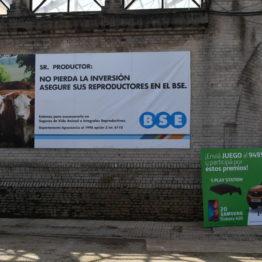 Expo Prado 2019 - Día 10 (191)