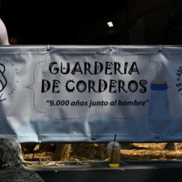 Expo Prado 2019 - Día 10 (223)