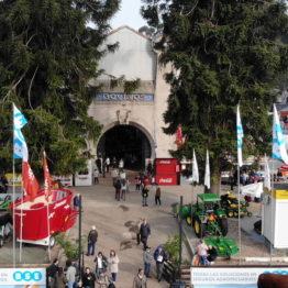 Expo Prado 2019 - Día 10 (23)